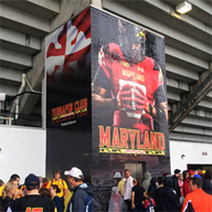 Maryland football wall graphic